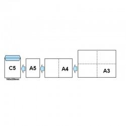 Plic C5 siliconic - inserare